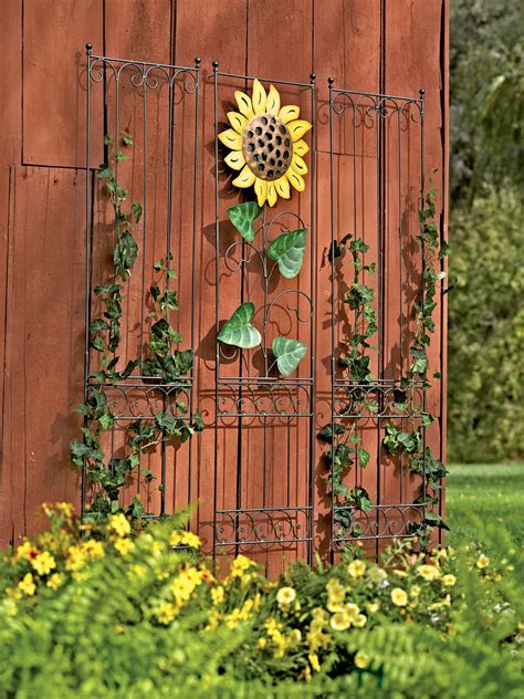 Decorative Garden Wall by Garden Wall Trellis Metal Trellis Gardeners