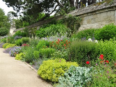 Botanical Garden Plants Top 10 Hardworking Plants For Herbaceous Borders Jardin