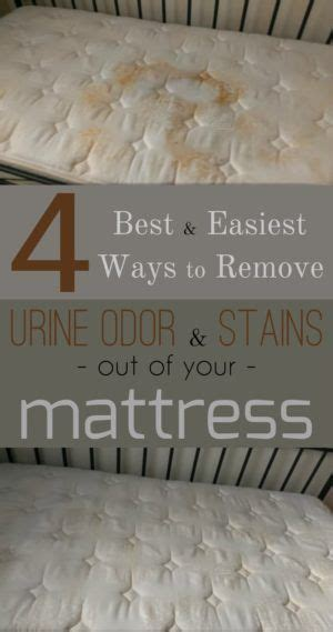 How To Remove Stains From Mattress With Vinegar by 1393 Best Images About Housekeeping And Organization On
