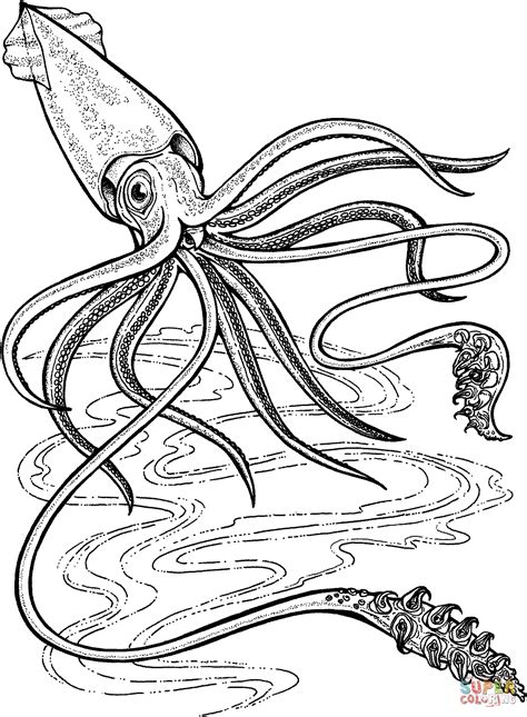 deep ocean giant squid coloring page free printable