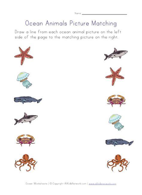 printable ocean animal pictures ocean animals picture matching worksheet