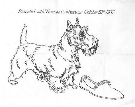 scottie dog coloring page 1000 images about scottie dogs clip art graphics line