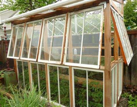 greenhouse windows greenhouses from old windows and doors insteading