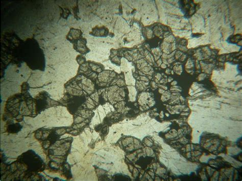 igneous rocks thin section photomicrographs igneous