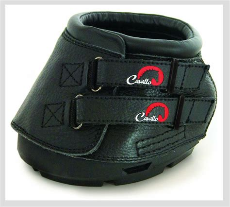 shoes for horses the all rounder boots for your all rounder