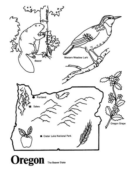 Oregon State Outline Coloring Page Ahg Pinterest Oregon Ducks Coloring Pages