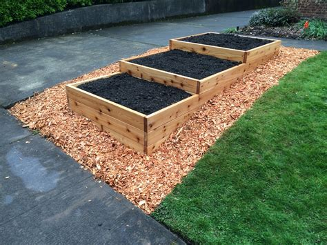 cedar mulch vegetable garden woodchip mulch portland edible gardens raised garden