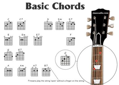 guitar chords for beginners bundle the only 2 books you need to learn chords for guitar guitar chord theory and guitar chord progressions today best seller volume 18 books guitar chords chart for beginners