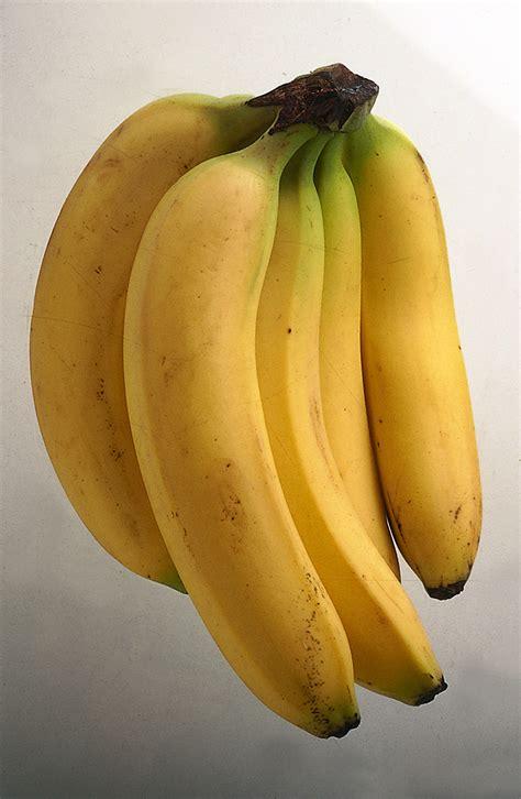 ricette cucina donna moderna ricette con ricette con banana donna moderna