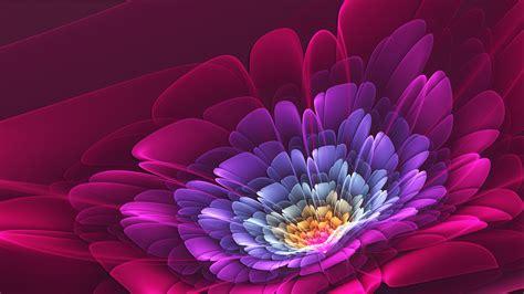 desktop gratis fiori sfondi fiori hd immagini