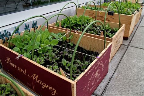Wine Crate Planter by Wine Crate Planter Craftbnb