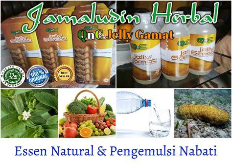 Qnc Jelly Gamat Untuk Rambut cara alami mengobati lichen planus produk obat herbal