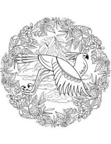 eagle mandala coloring pages eagle mandala coloring pages behind eagle best free
