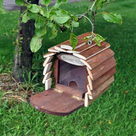 wooden garden bee insect bird squirrel hotel house home