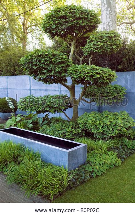 Garden Design With Pruning Plants 634 Best Images About Japanese Gardens On