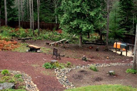 landscaping ideas for backyard landscaping ideas wooded backyard pdf