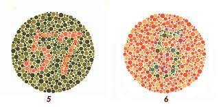 tavole ottotipiche i principali test visivi
