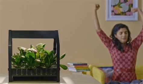 ikea indoor garden ikea launches indoor gardening kit