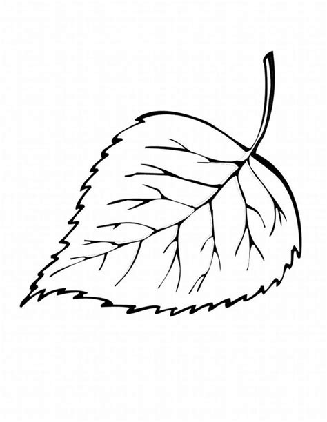 blank leaf template coloring home