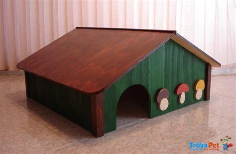 casa per tartarughe casa rifugio per tartarughe in vendita a mi
