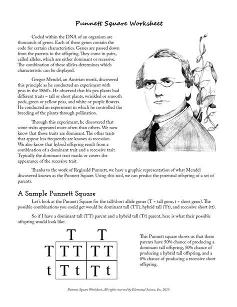 6 3 Mendel And Heredity Worksheet Answers