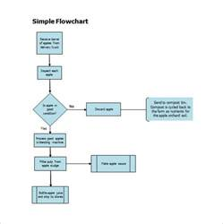 free flowchart template flowchart template word allied health process flow chart