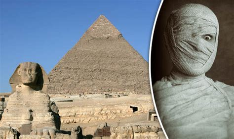 Ancient Egyptians Analysis Of Mummy Dna Reveals This
