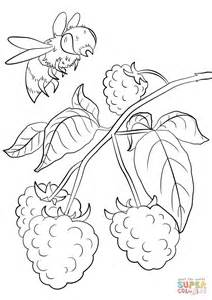 legislative branch pages coloring pages