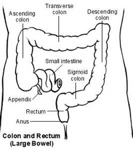 left abdominal left abdominal black stool