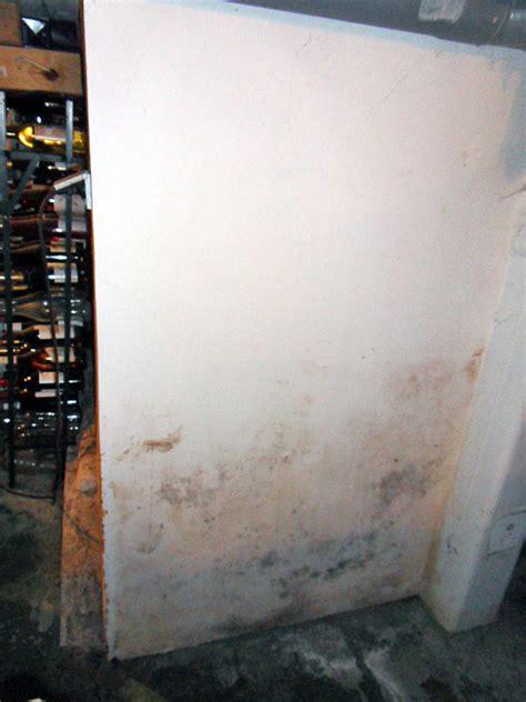 mur humide traitement ma 231 onnerie travaux r 233 novation traiter un mur humide dans une cave enterr 233 e