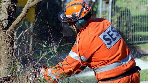 entire lake macquarie ses stood newcastle herald