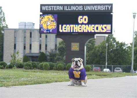 Western Illinois Mba Admission by 50 Most Affordable Schools For An Emergency Management
