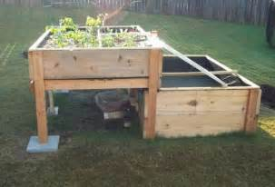 backyard aquaponics system design how you can boost your