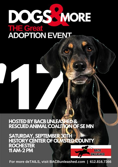 adoption events dogs more adoption event