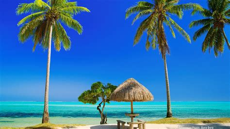 pin beautiful tropical background seascape 1920x1080 509k pin holiday at the tropical beach wallpaper on pinterest