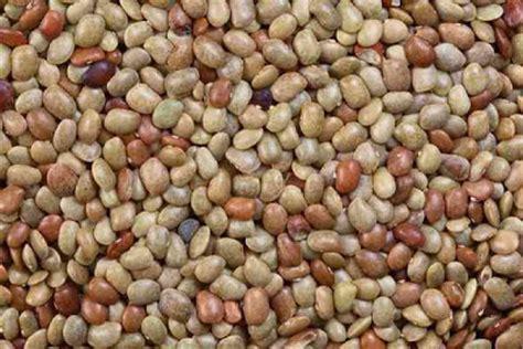 Totole 400 Gram uses benefits of ayurvedic gram kulthi