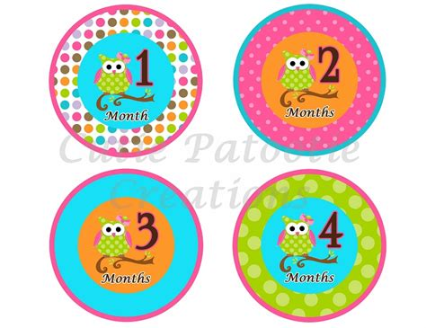printable owl stickers owl monthly onesie stickers monthly baby sticker