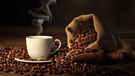 Java Nation   Coffee Shop in Kensington, MD
