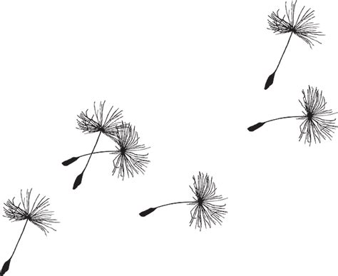 dandelion seed tattoo dandelion seed flora 183 free vector graphic on pixabay