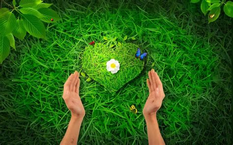 images of love nature hd wallpapers 1080p nature love mobile wallpapers