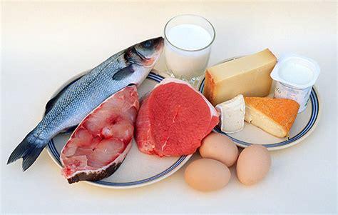 alimentos que contengan calcio que no sean lacteos llenar nuestra dieta de proteinas bueno para nuestros