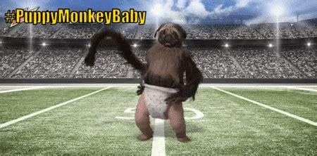 puppy monkey baby gif image puppymonkeybaby gif just wiki fandom powered by wikia