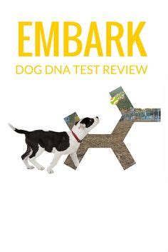 embark dna once you had a wonderful a without one is a diminished dean