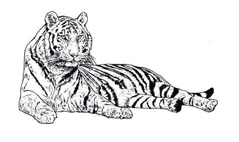Coloriage Reine Des Neiges Elsa Imprimer Gratuit New Animaux Sauvages De La Jungle Animaux Coloriages A Coloriage Tigre L