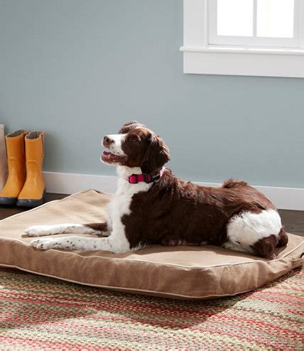 llbean dog bed premium denim dog bed set rectangular free shipping at