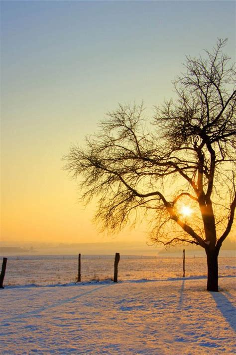 iphone hd wallpaper 640 x 960 640x960 the nature sunset scenery of winter background for