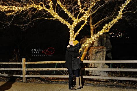 Angel Eyes Photography 187 Engagement Lincoln Park Zoo Light Hours
