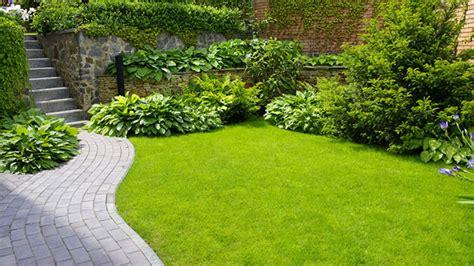 giardino senza prato hai un bel prato ecco cosa devi fare
