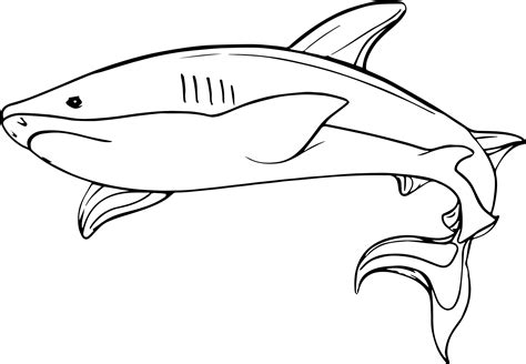 coloring pages of fish and sharks shark coloring pages 5 coloring pages of fish and sharks