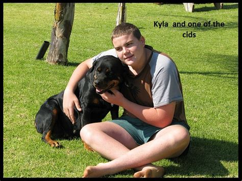 information about rottweiler facts about the rottweiler our dogs uitzicht nw camelwest rottweilers